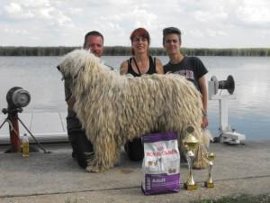 Boglya, büszke tulajdonosaival és trófeáival