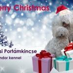 Kellemes karácsonyi ünnepeket kíván a Hevesi Portámkincse Komondor Kennel!