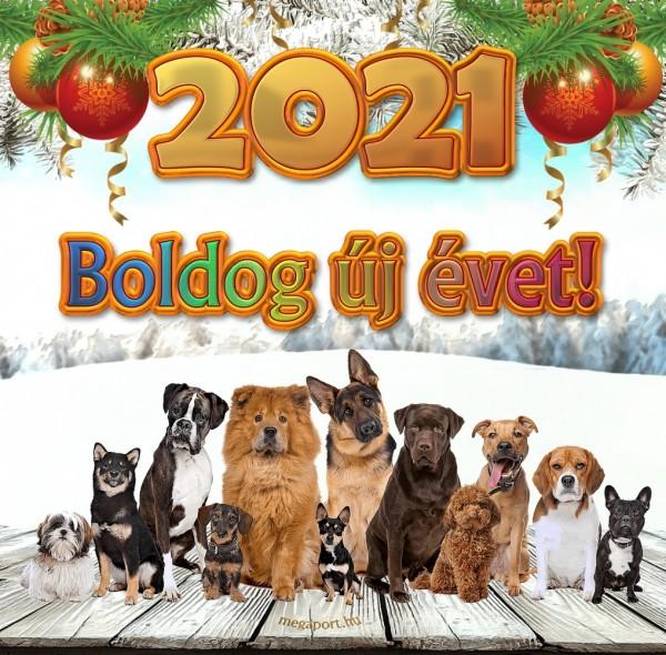 thumb_boldog-uj-evet-2021-kutyak-3028964668